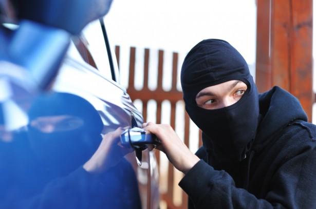car thief 2